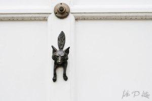 Fox door furniture