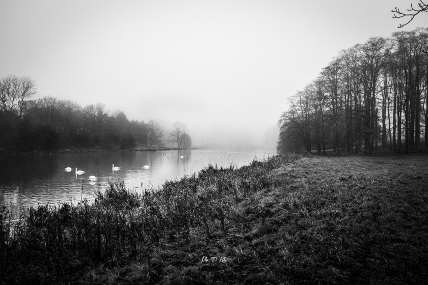 Black and white image of the River Glyme in Woodstock Oxfordshire November 2020 by MrPKalu