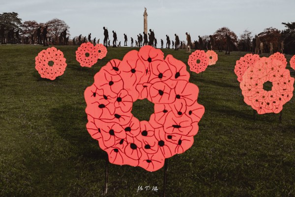 Image of the red poppies which form part of the Standing with Giants installation at Blenheim Palace in Woodstock Oxfordshire