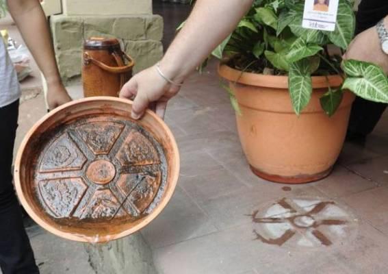 dengue breeding in flower pots