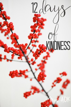 12 Days of Kindness  Mrs. AOK, A Work In Progress