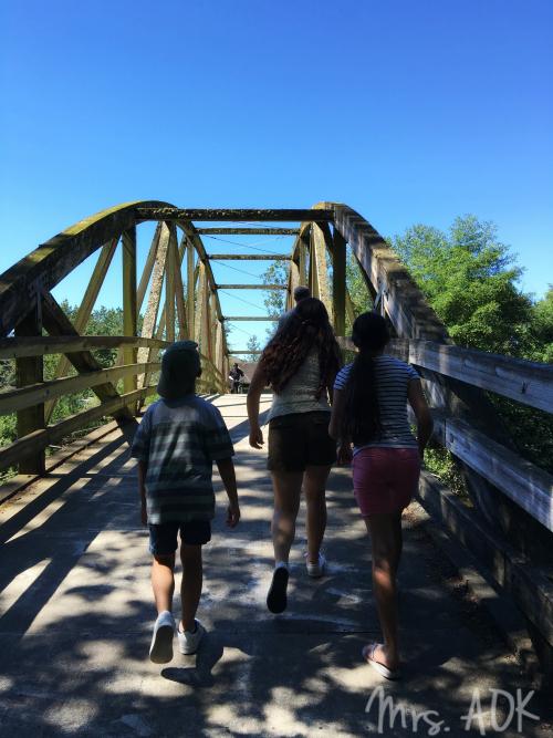 Bridge in Bothell