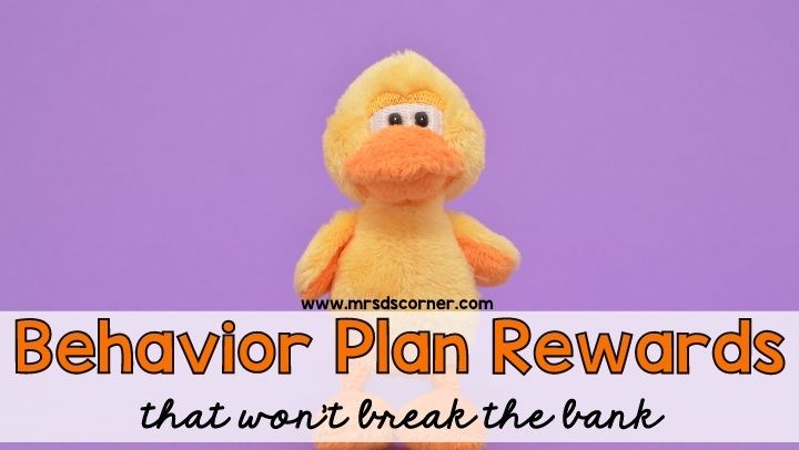 Behavior Plan Rewards that won't break the bank