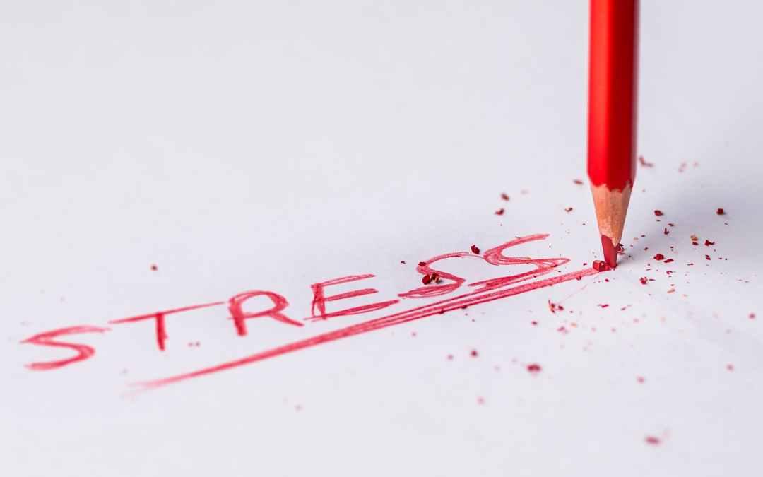 Skräddarsydd heldagsutbildning om stress och psykisk ohälsa