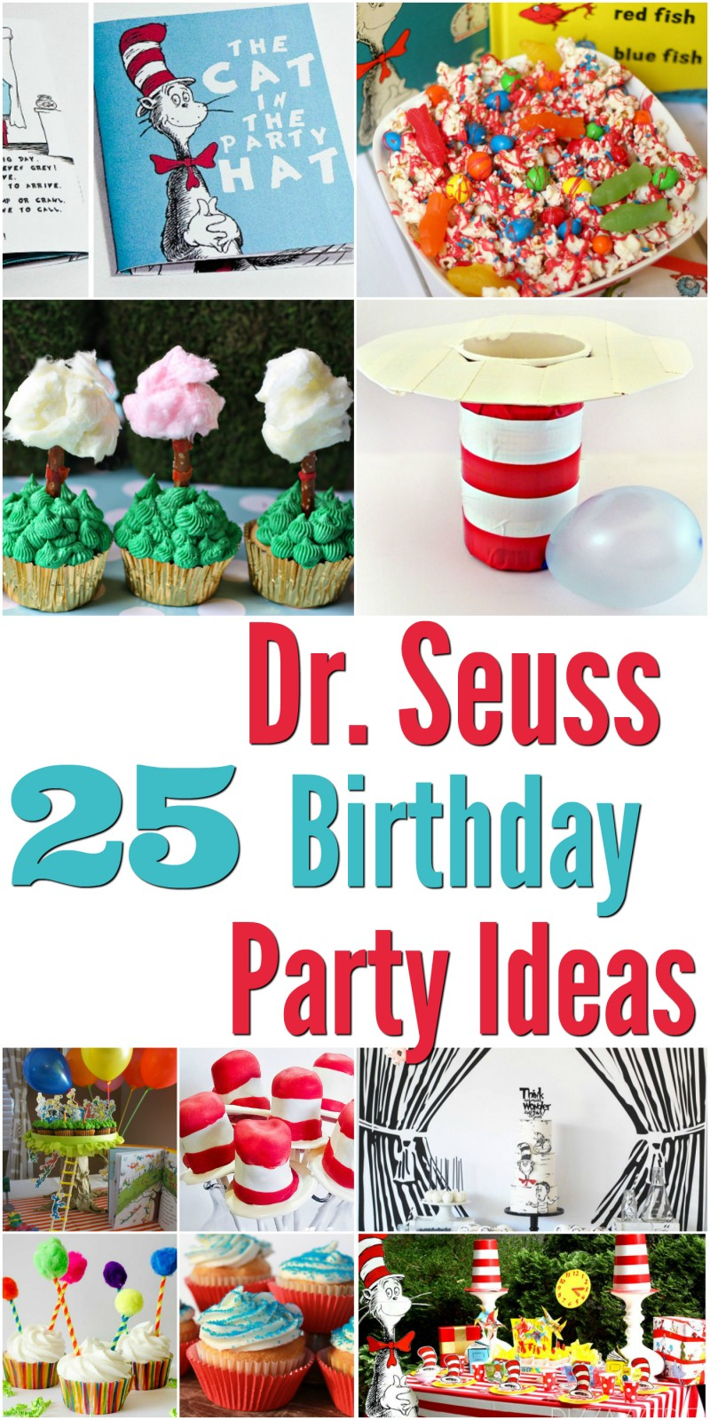 25 dr seuss birthday party ideas mrs