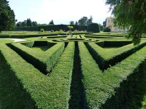 teaching discoveries | setting a path | deciding where lessons are going