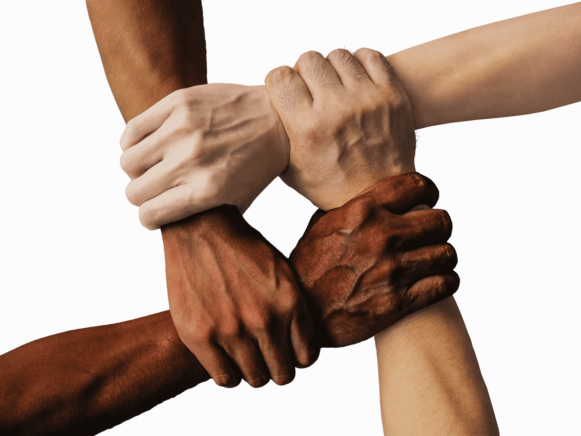 Diversity represented in people of different colors holding hands