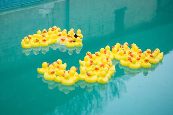 Hayley Ruth Photography , Sturmer Hall , private pool, yellow rubber ducks
