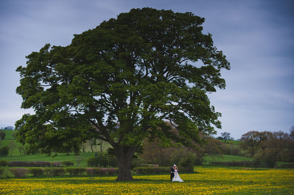 Cloud9-Wedding-Photography, bride and groom portraits, field, tree