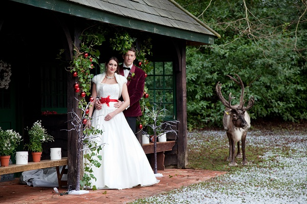 Bride, Groom & Raindeer at The Summer House Side Shot