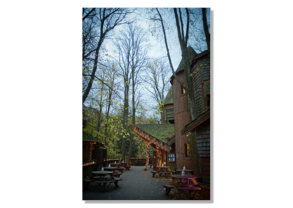 alnwick-treehouse-wedding-photography-10