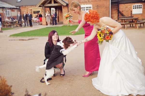 steff_and_daves_wedding_453