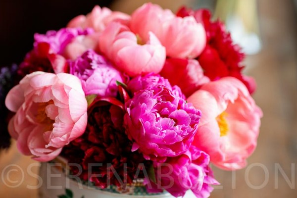 wedding flowers, choosing wedding flowers, elizabeth marsh floral design, Image Credit - Serena Bolton Photography