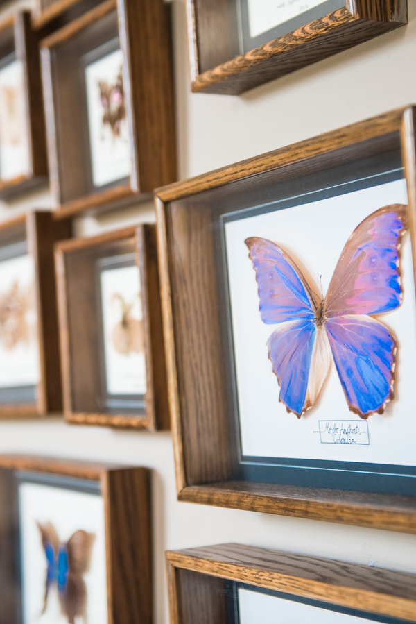 tropical wedding, tropical wedding styled shoot, hannah mcclune photography, stoke place, butterfly wall