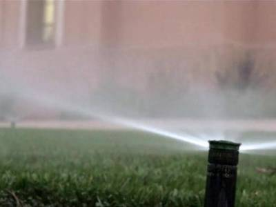 Over-Watering Your Lawn Wastes Water