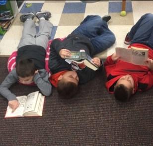 reading choice books-mrs pennington-reading