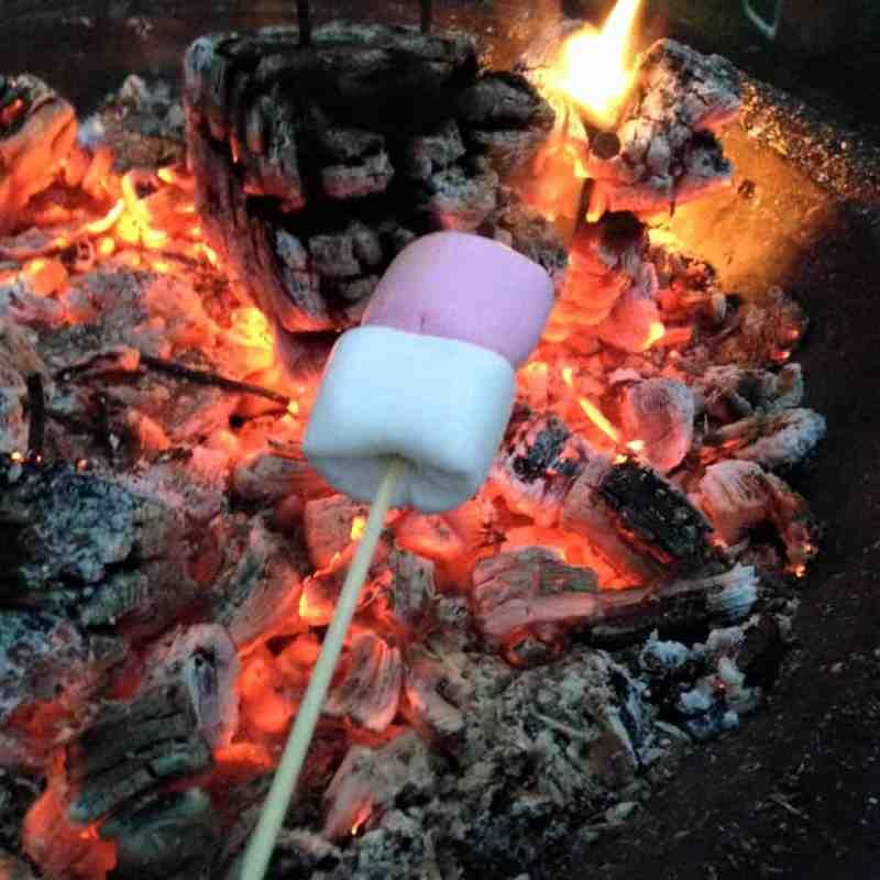 toasting marshmallows firepit