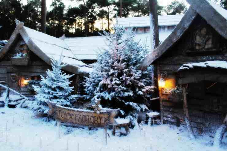 LaplandUK snow covered trees