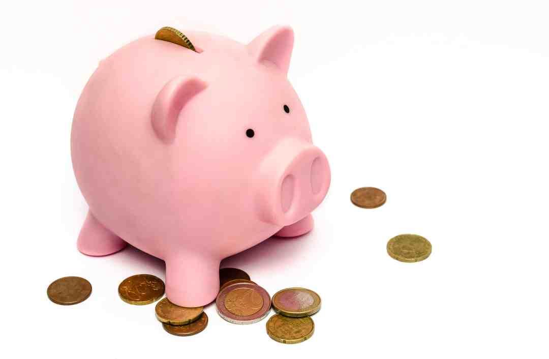 save money pig
