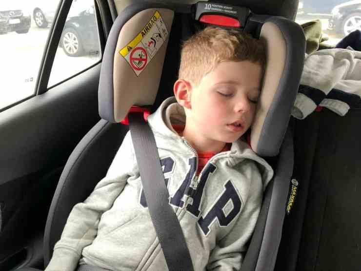 Olly asleep