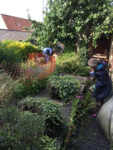 Weeding in the garden on Friday 21st July 2017