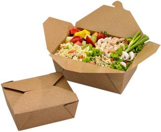 bio plus earth take out boxes paper