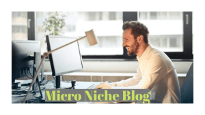 What is Micro Niche website and How to start micro niche website
