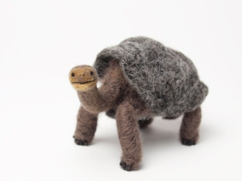 Miki Ichiyama needle felted tortoise Lonesome George