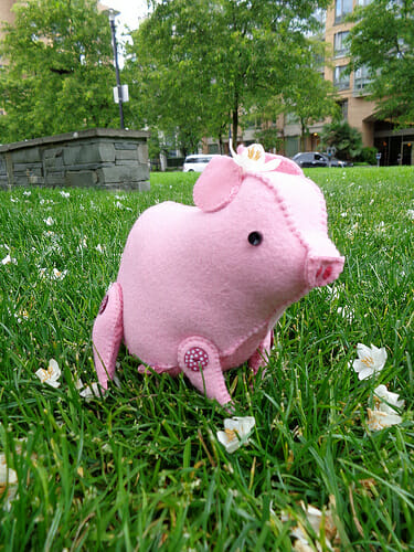 Too Cute Tuesday – Piggy by Miaumau