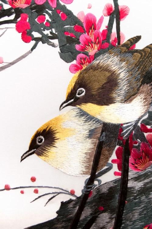 Close-Up_birds