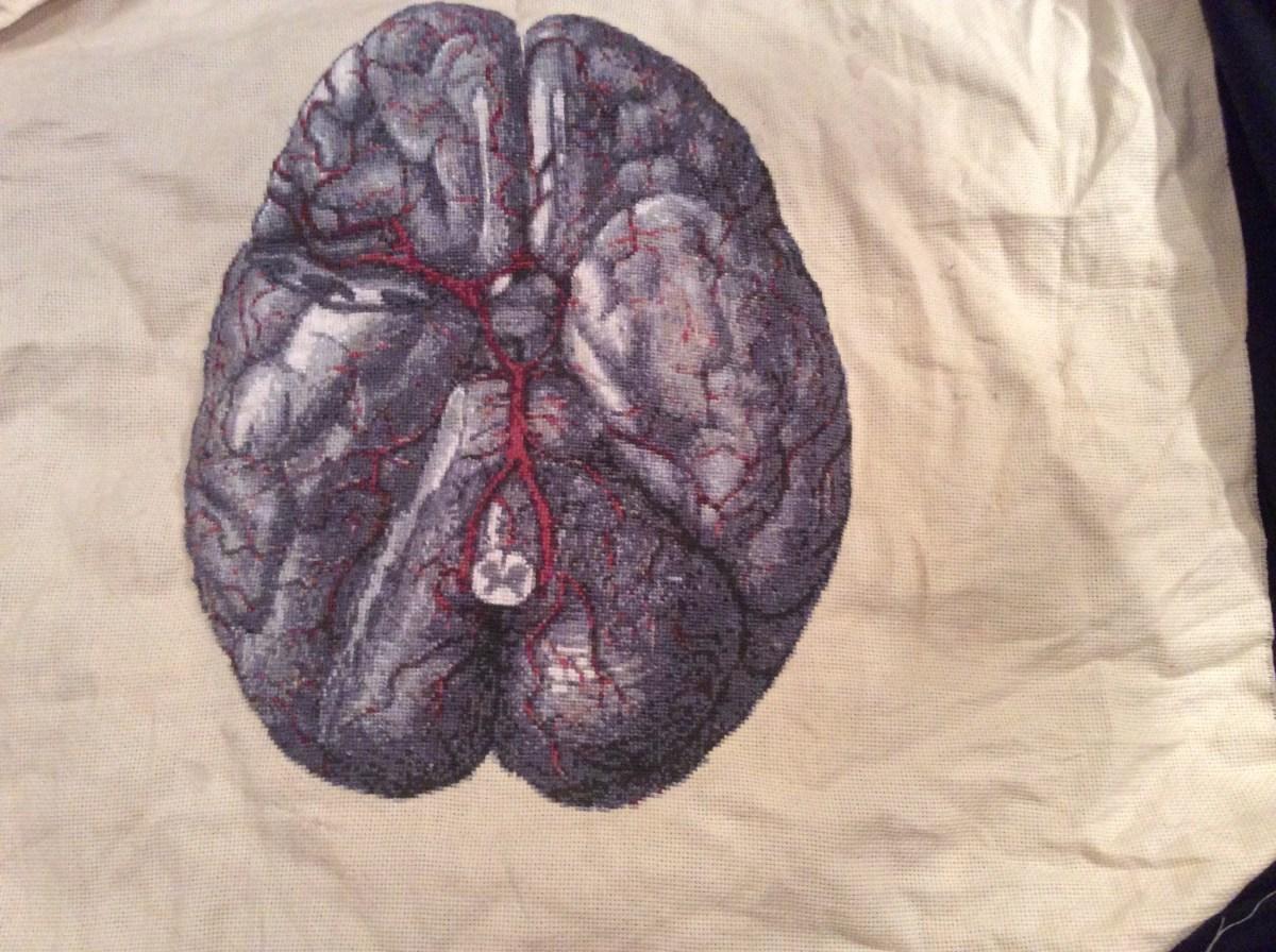 Stitchgasm – Sarah's Brain