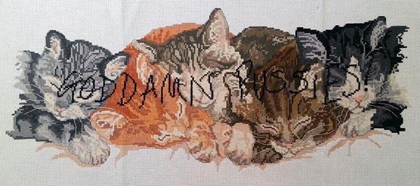 Goddamn Pussies, by Mr X Stitch