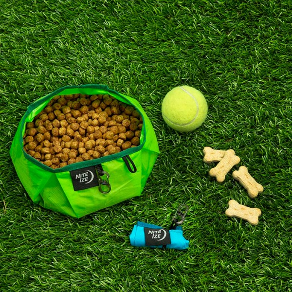 NiteIze RadDog Collapsible Bowl - Lime | Hundezubehör | MS - Shooting