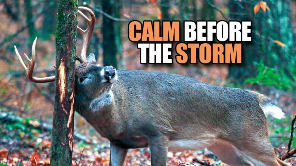 Calm before the storm — Deer hunting tips for the prerut