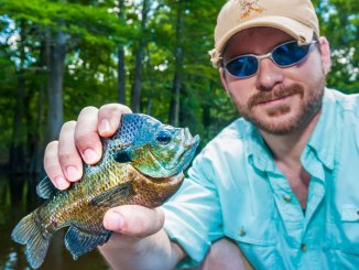 Bream fishing can be a lot of fun, as well as very productive — if you know the right approach.