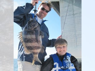 Sheepshead are a great February target around pilings under the US 90 bridge over the Jordan River in Bay St. Louis.
