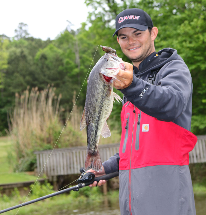 Use a frog as a basic search bait in spring.