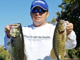 Where weeds and grass exist near deep cover, both largemouth and smallmouth bass hang out ambushing shad.