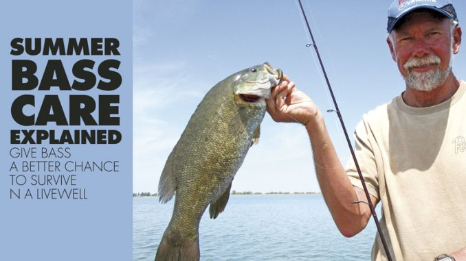 Although survival research has focused on largemouth bass, cool, well-aerated livewells and short fight times probably increase smallmouth bass survival, too.