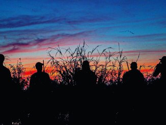 Mississippi duck hunters are cautiously optimistic about the 2019-20 season. If the weather lines up, it could be a great one. (Photo by Burton Angelle)