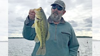 Is bass stocking needed?