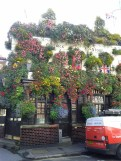 Pub covered in green, London