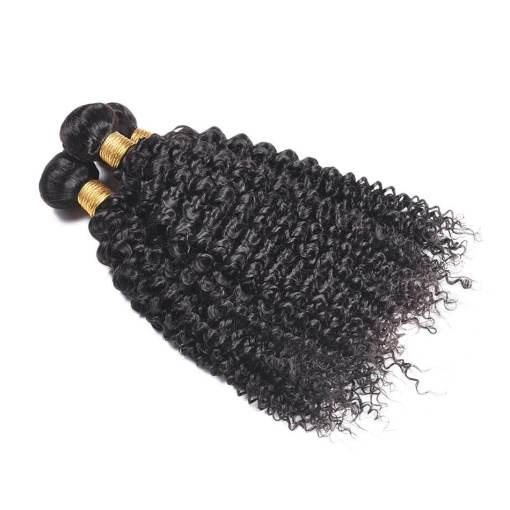 curly wave hair bundles 1