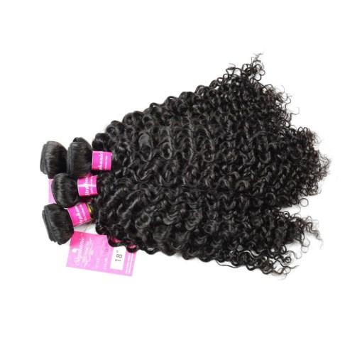 Curly Wave Hair Bundles Virgin Human Hair 8
