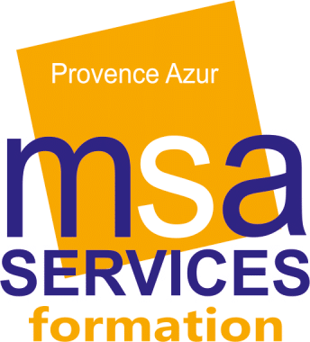 msa services formation