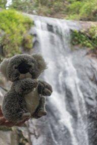 Devant la cascade de Feiticeira à Ilha Grande