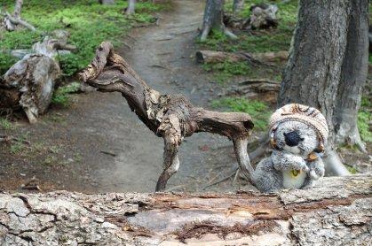 Avec mon pote le cerf en bois