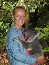 koala_ml.jpg