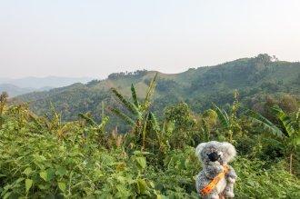 Joli point de vue sur la campgne laotienne