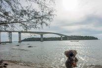 Devant le pont de Sihanoukville fermé